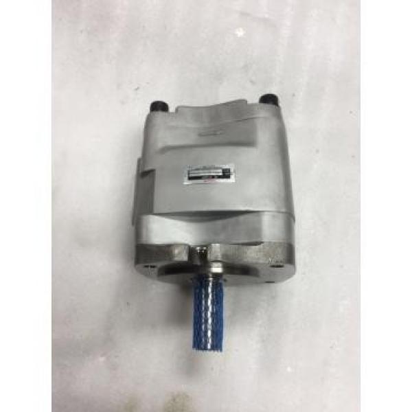 IPH-5B-50-11 Nachi Gear Pump IPH Series #3 image