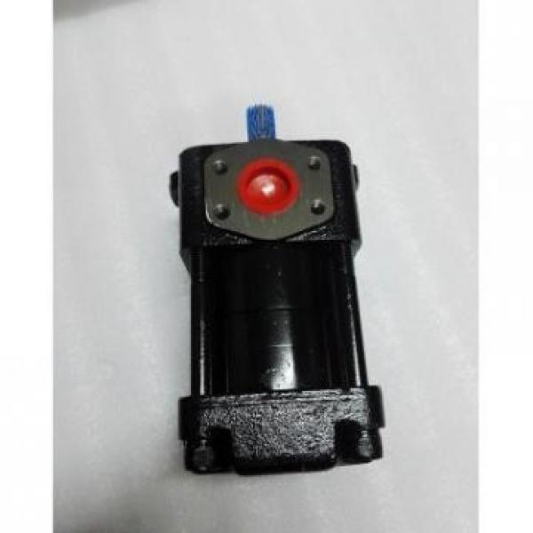 CQT63-80FV-S1376-A Japan Sumitomo Gear Pump #4 image